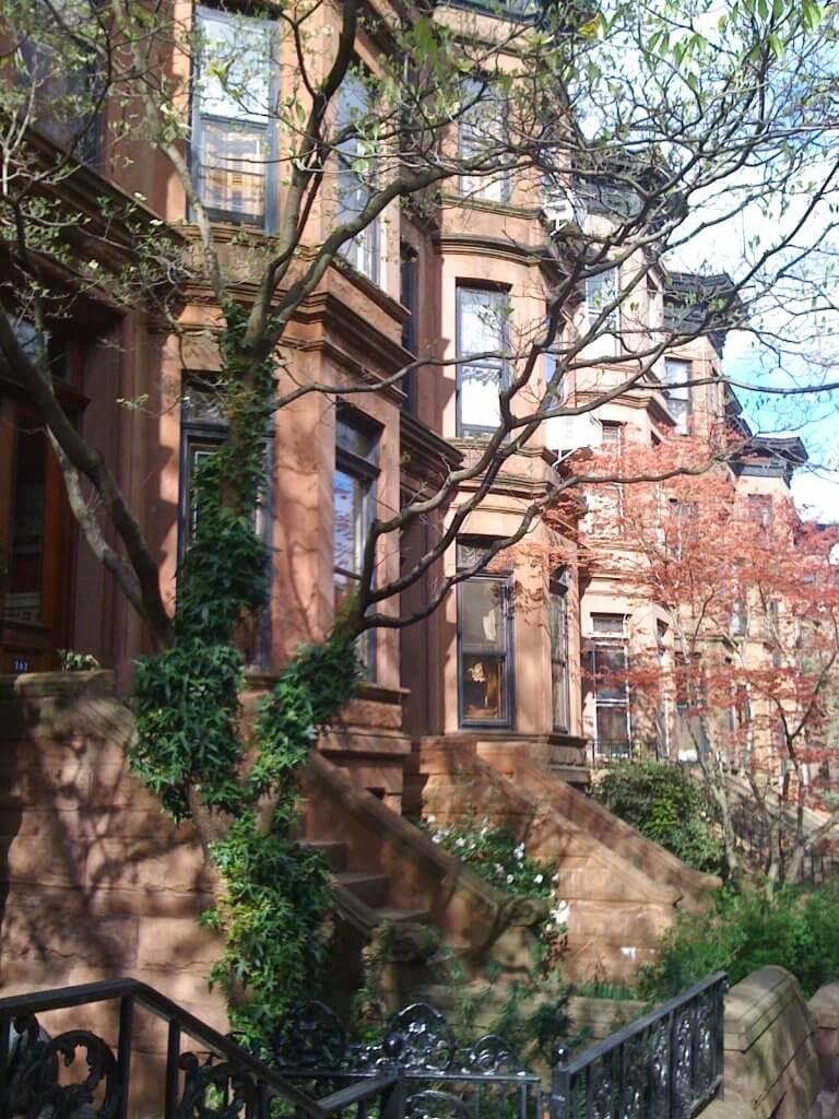 Classic Brownstones in Brooklyn, NYC